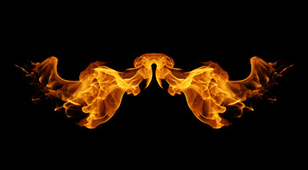 abstract fire flames resemble wing on black background