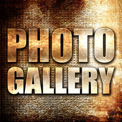 photo gallery, 3D rendering, metal text on rust background