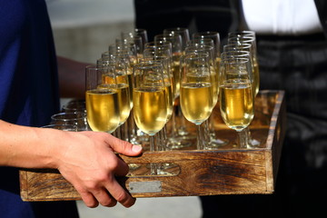 champagne/ tray of glasses filled with champagne