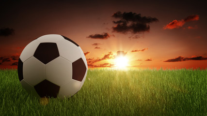 Soccer Ball on Green Grass with Bright Sunlight
