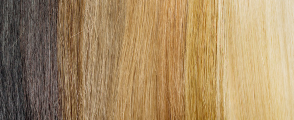 hair extension palette with color samples from blonde to black