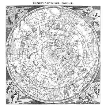 Boreal Constellations Illustration