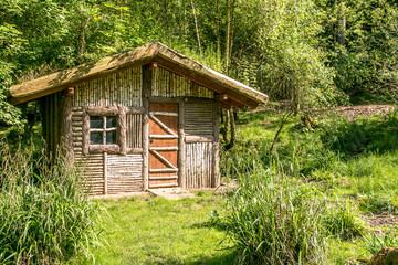 Gleine Holzhütte im Grünen