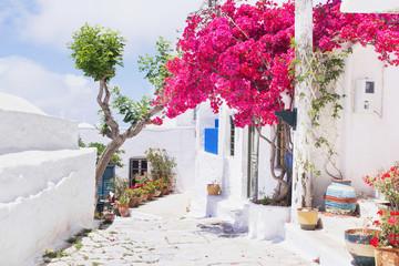 Obraz Traditional greek street with flowers in Amorgos island, Greece - fototapety do salonu