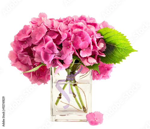 Hydrangea Flowers Inside Glass Vase Stock Photo And Royalty Free