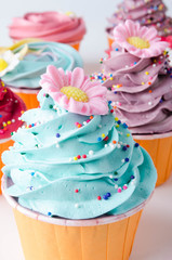 Delicious cupcakes. Colorful cupcakes.