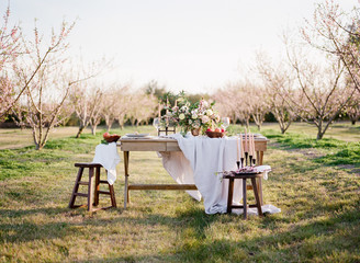 Table in orchard with flower arrangment