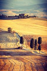Obraz Piękny zachód słońca w pobliżu Pienza, Toskania, Włochy - fototapety do salonu