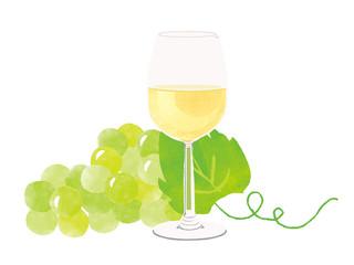 white wine, white grape