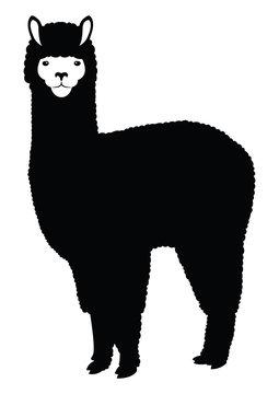 Alpaca Lama silhouette