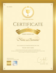 Portrait certificate of participation in gold theme with award trophy