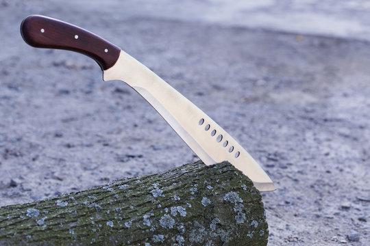 machete stuck in stump