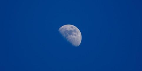 Moon closeup on dark  blue sky