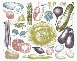 Vector Vegetables Collection. Hand drawn vegetables sketch. Healthy Food illustration.  Farm fresh products. Oraganic food set. Vintage vegetablesin pastel colors