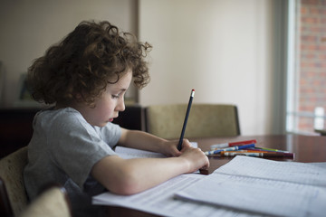 Boy At Home Sitting At Table And Doing Homework