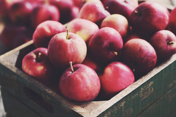 Organic apples in green wooden crate