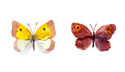 Watercolor bright butterflies