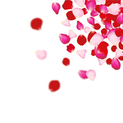 Rose petals background. For presentations, invitation ad print. Wedding valentine love concept