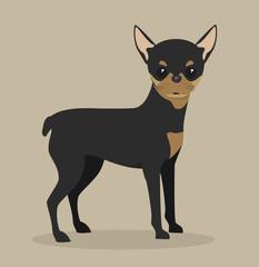 cute dog design
