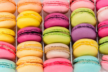 macro multicolored french macaroon