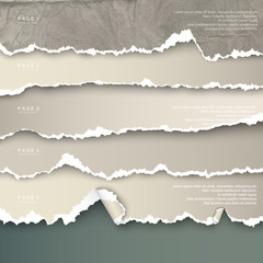 design elements torn paper with place for text