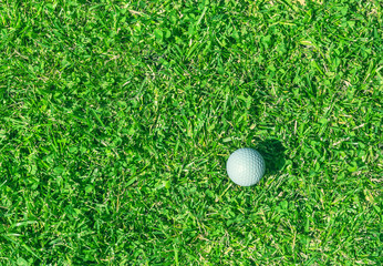 golf ball on the grass