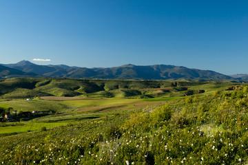 Scenic sunny valley