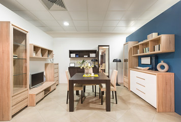 Living room interior furniture