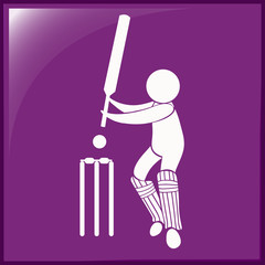 Sport icon design for cricket on purple background