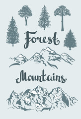 Vector Hand drawn mountain landscape and isolated trees. .
