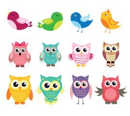 cute owl and birds set of vector illustration