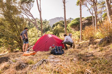 Four men putting up dome tent in forest, Deer Park, Cape Town, South Africa
