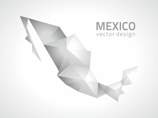 Mexico silver vector map, state of America