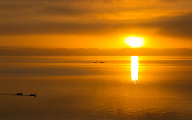 Foto op Aluminium Oranje Sunrise over Lake