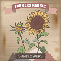 Farmer market label with sunflower color sketch.