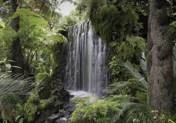 waterfall on madeira island