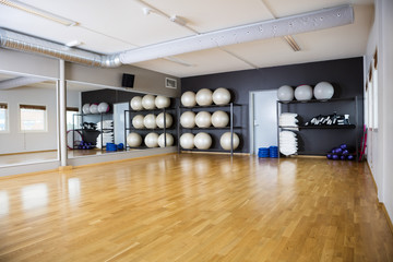 Exercise Balls Arranged In Shelves By Mirror