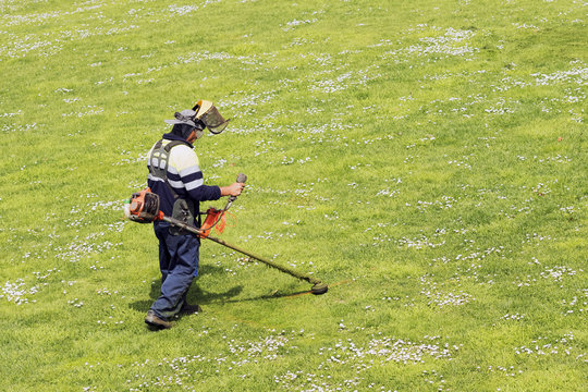 utility worker of municipality  with  brush cutting for remove grass in city park