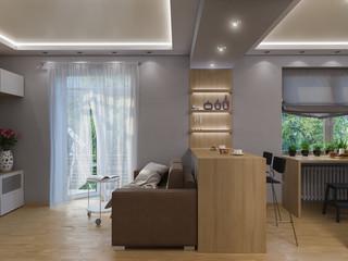 3d rendering living room, kitchen, hall, bedroom, bathroom interior design in top view