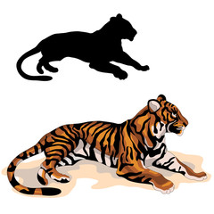 adult tiger is realistic black color silhouette vector illustration