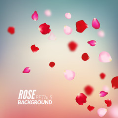 Rose petals background. For presentations, invitation ad print. Wedding valentine love concept