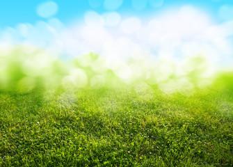 Papiers peints Herbe grass background