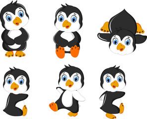 young penguin cartoon set posing