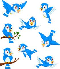 set cute blue bird cartoon character