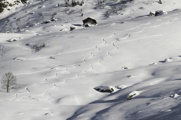 Curvy ski tracks down hill