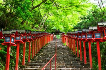 京都 新緑の貴船神社 Wall mural