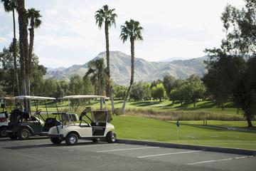 Golf carts parked at a golf club, Palm Springs, California, USA