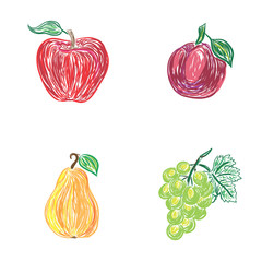 apple, plum, pear, grapes, sketch style, vector illustration