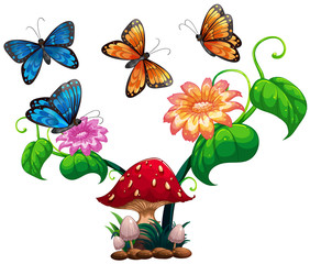 Butterflies flying around mushroom and flower