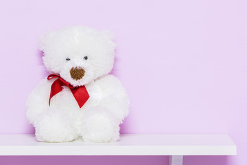 White teddy bear on shelf.